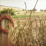 horseshoe-504821_1280